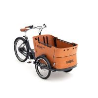 Babboe Curve Mountain 500Wh 1J holz