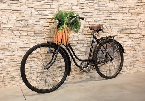 altes Fahrrad mit Möhren